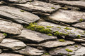 Stone tiles of slate-roof house Stock Photos