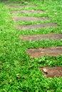Stone walking path Royalty Free Stock Photo