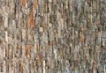 Stone Wall Background In Natur...