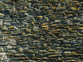 Stone wall background texture real Royalty Free Stock Images