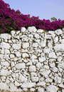 Stone wall and bougainvillea Royalty Free Stock Images