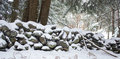 Stone Wall in Forest Covered in Snow Royalty Free Stock Photo