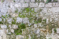 Stone wall with moss texture of Stock Photo