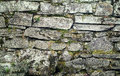 Stone wall with mossy and grass dry showing the details of its component irregularly shaped rocks Royalty Free Stock Photos