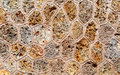 Stone wall - texture Royalty Free Stock Photo