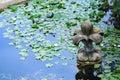 Stone and water lily in pond of Villa Doria Pamphili at the Via Aurelia Antica