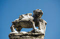 Stone winged lion murano weather damaged carving of a the symbol of venice island of venice italy Stock Image