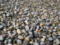 Stones in the beach of bray Stock Photography