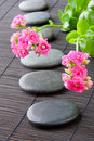 Stones path with flowers for zen spa background. V Royalty Free Stock Photo