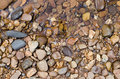 Stones on riverbank natural outdoor Royalty Free Stock Photo