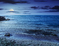 Stones and seaweed on sandy coast of the sea at night Royalty Free Stock Photo