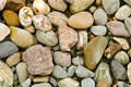 Stones on shore Stock Photography