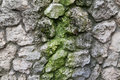 Stonewall with moss closeup of stone wall texture Stock Photography