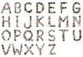 Stony alphabet