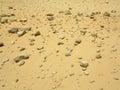Stony desert Royalty Free Stock Photo