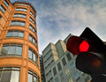 Stop light in the City Royalty Free Stock Image