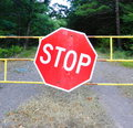 Stop sign by the empty road Stock Photos