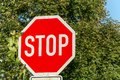 Stop sign in the street in front of trees Royalty Free Stock Photo
