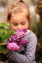 Stopping to smell the flowers a cute little brown haired girl some pretty purple lilac shallow depth of field Stock Images