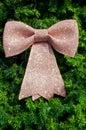 Stor bow på jultree Royaltyfri Fotografi