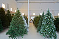 Storage room with artificial christmas trees rows of Stock Photography