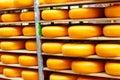 Stored cheese Stock Photo