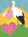 Stork Carrying Baby Girl Stock Images