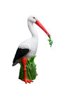 Stork with a frog in its beak Royalty Free Stock Photo