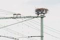 Stork nest on top of a railroad construction the netherlands Stock Photos