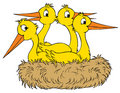 Stork nest (vector clip-art) Royalty Free Stock Image