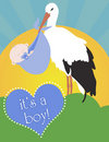 Stork with newborn baby boy Royalty Free Stock Photos
