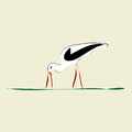 Stork with red beak and feet