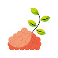 Storm brain with leafs plant isolated icon Royalty Free Stock Photo