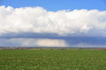 Storm clouds over the green field Royalty Free Stock Photo