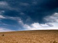 Storm clouds over wheat field kansas usa Royalty Free Stock Photo