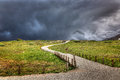 Into the Storm, Independence Pass, Colorado Royalty Free Stock Photo