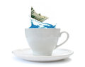 Storm in a teacup dollar paper boat riding steep wave Royalty Free Stock Image