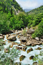 Stormy mountain river in the rocky gorge and green forest Stock Photo