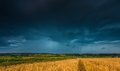 Stormy sky over field Royalty Free Stock Photo