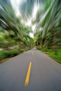 Straight road with palm trees motion blur Royalty Free Stock Photos