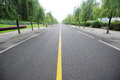 Straight road with willows Royalty Free Stock Photo