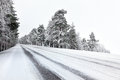 Straight winter road with tress on both sides cloudy day Royalty Free Stock Photo