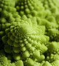 Strange Cauliflower Stock Images
