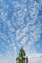 Strange cirrus cloud formation over Las Vegas, Nevada. Royalty Free Stock Photo