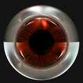 Strange eye ball creature eyeball with eerie lighting and black background Stock Photos