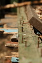 The stranger among the metaphor his own old rusty nails on boards compared to people Royalty Free Stock Photography