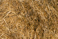 Straw bale arranged. Stock Photography