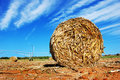Straw bale on a farm Royalty Free Stock Image