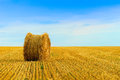 Straw bale isolated in harvested field Stock Photos