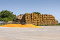 Straw bale stack in farm yard copy space on blue sky Stock Photo